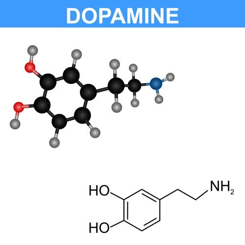 행복감과 통증 등에 관여하는 뇌 신경전달물질 도파민의 화학 구조