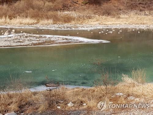 석포제련소 인근 낙동강에 낀 흰색 미생물 [연합뉴스 자료사진]