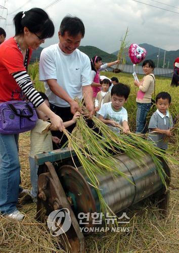농촌문화체험