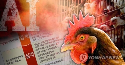 조류인플루엔자 PG [연합뉴스 자료사진]