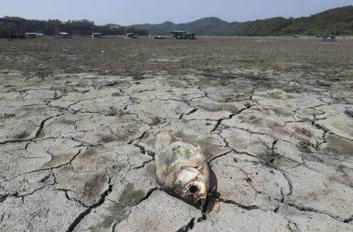 지난해 5월 가뭄으로 바짝 마른 초평저수지 [연합뉴스 자료사진]