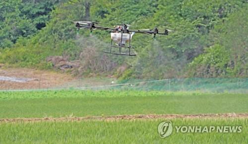 지난해 5월 강원도의 농약방제 시범 모습[연합뉴스 자료사진]