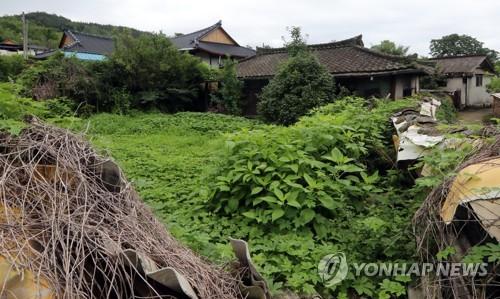잡초 무성한 농촌 빈집