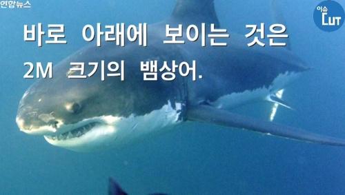상어, 곰, 뱀으로부터 살아남은 남자