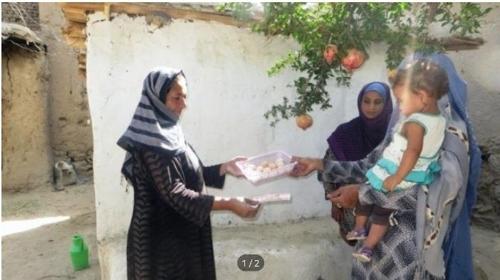 아프가니탄 여성들의 자립을 돕는 양계사업.[NEI코리아 제공]