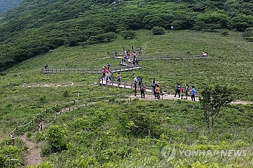 곰배령[연합뉴스 자료사진]