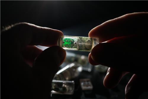 알약처럼 삼키면 위출혈 여부 알려주는 캡슐 개발