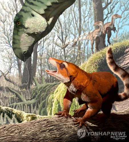 백악기 원시 포유류 두개골 화석이 밝혀준 비밀들