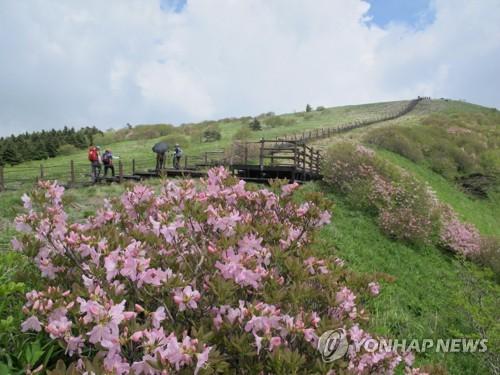 낮 최고 30도 초여름 날씨…충북 유원지·축제장 북적