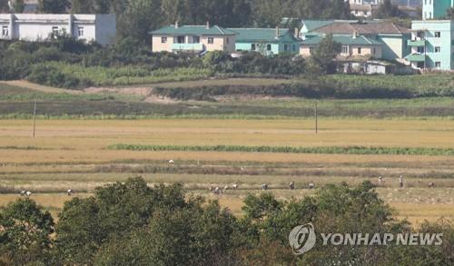 농사짓는 북한 주민들