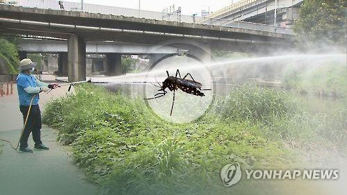 모기 예방활동 CG[연합뉴스 자료사진]