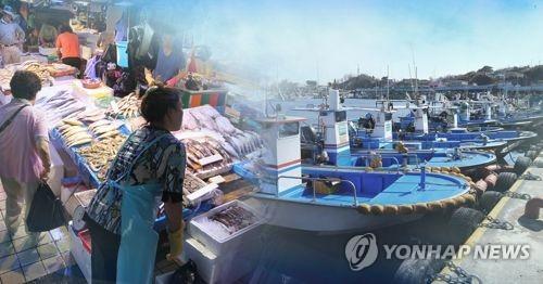 해수부, 11개 어종 허용 어획량 28만t 결정…오징어 33% 줄어