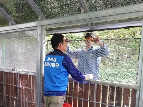 [제주소식] 자연유산문화재 119 방재단 모집