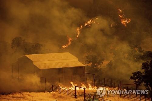 미 캘리포니아 산불 급속 확산…시간당 여의도 면적만큼 태워