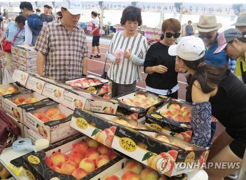 옥천 포도·복숭아 축제 농산물 판매액 5억원 돌파