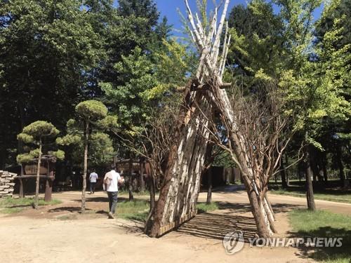 남이섬, 버려진 나무 부산물 관광 자원화…재활용 눈길