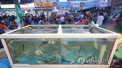 마산어시장 축제[연합뉴스 자료사진]