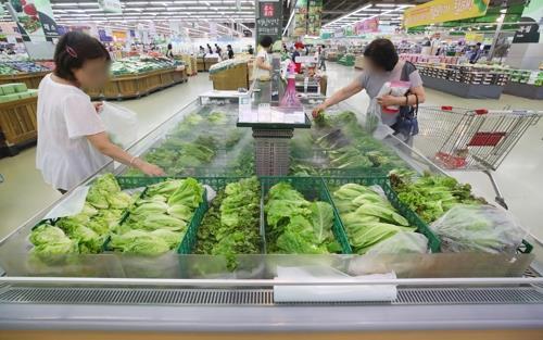 기록적인 폭염에 채소가격 '고공행진'