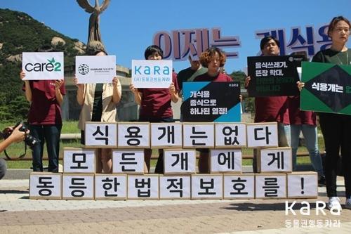 """""""한국에서 개식용 없어지길""""…세계시민 88만명 서명"""
