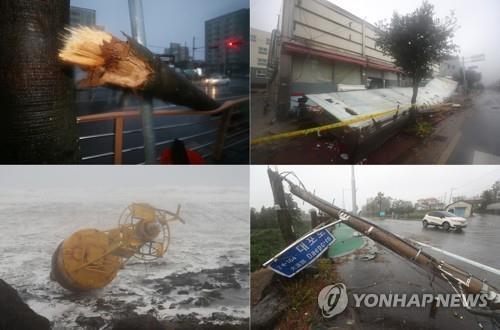 '태풍 길목' 제주 피해 속출