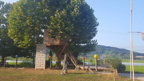 나무 위 오두막 도서관(웰촌)