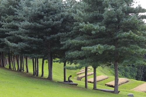 초가을 덕포진을 찾은 남성이 잣나무 숲속에서 독서를 하고 있다.(성연재)