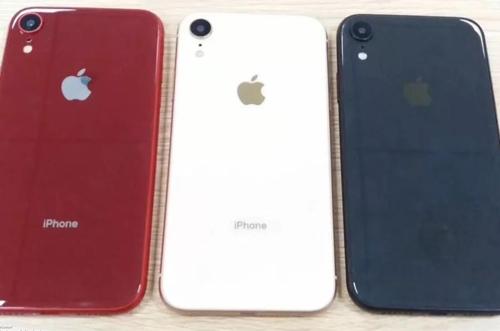 아이폰 엔트리 모델 이름은 'XC'