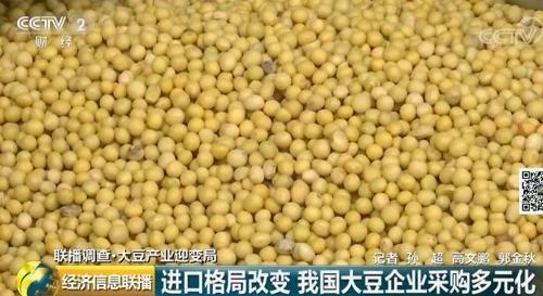 """CCTV """"중국 대두 수입 시장 변화"""""""