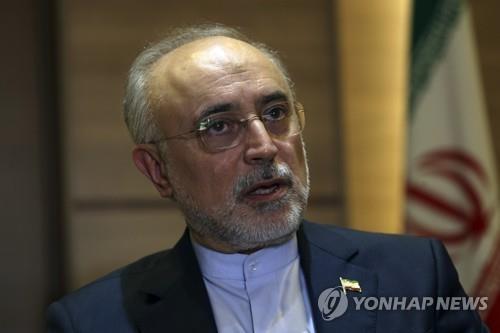 알리 아크바르 살레히 이란 원자력청장[AP=연합뉴스자료사진]