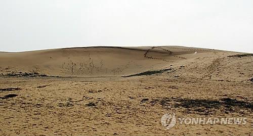 태안 신두리 사구 [연합뉴스 자료 사진]