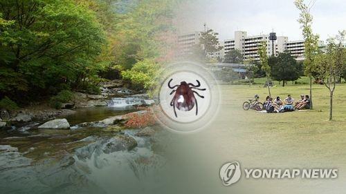 성묘길 진드기 조심…쯔쯔가무시 90% 가을철 집중