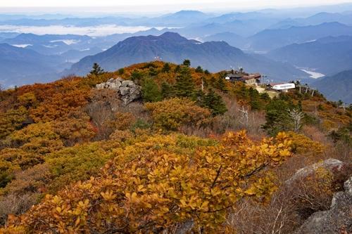 [카메라뉴스] 국립공원 무주덕유산 단풍 이번 주말 절정