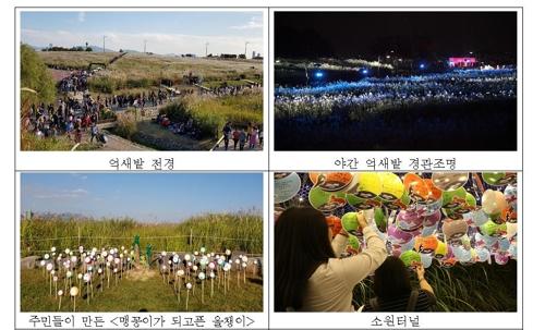 주말 하늘공원서 억새축제…강동선사문화·이태원지구촌축제도