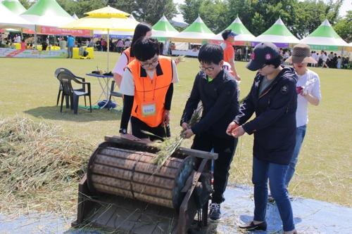 가족과 함께 우리 밀 체험…12∼14일 광산우리밀축제
