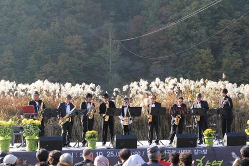 [주말 N 여행] 충청권: 가을 정취 느끼며 갈대밭 걸어볼까…단양 사평마을