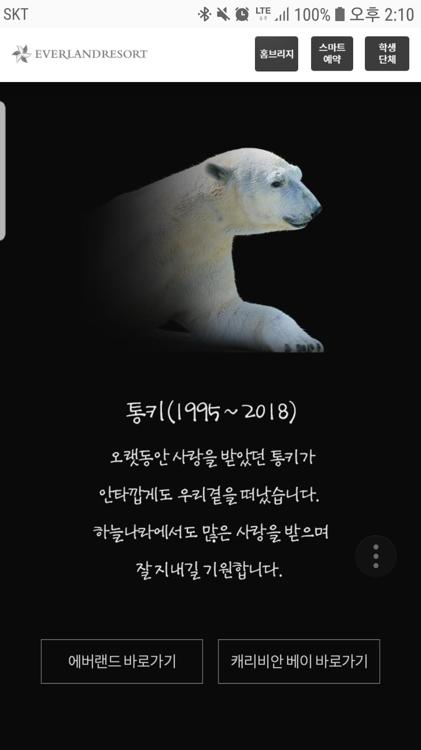 다음달 영국 간다던 북극곰 통키…갑자기 하늘나라로