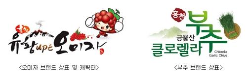 [강원소식] 홍천 오미자·부추 공동브랜드 상표 출원