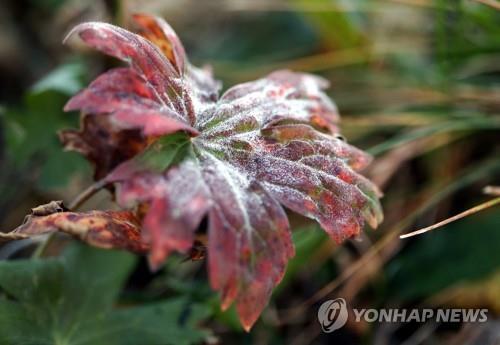 대구·경북 쌀쌀한 아침…평년보다 2∼3도 낮아