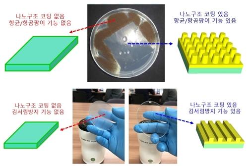화학 처리 없이도 항균 효과…나노구조 활용기술 개발