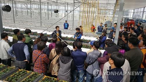강원도, 북한 이탈주민 영농 정착지원…'농가·농지 제공'