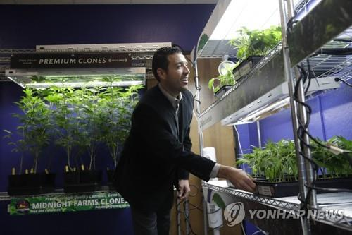 美 콜로라도서 마리화나 냄새 재판…대마산업 제동 거나