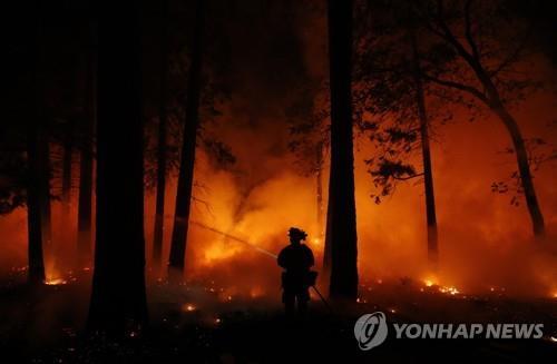 캘리포니아 산불, 사투 벌이는 소방대원