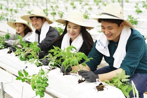 신세계푸드, 충남 논산서 협력 농가 돕기 봉사 활동