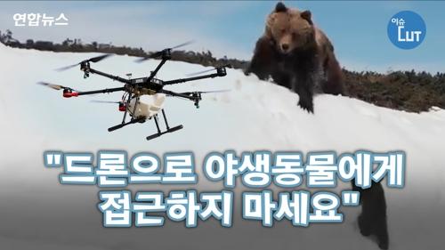 """""""드론으로 야생동물에게 접근하지 마세요"""""""