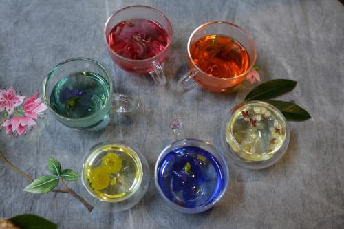 신안군 꽃차 산업화 나선다…꽃차협회와 협약