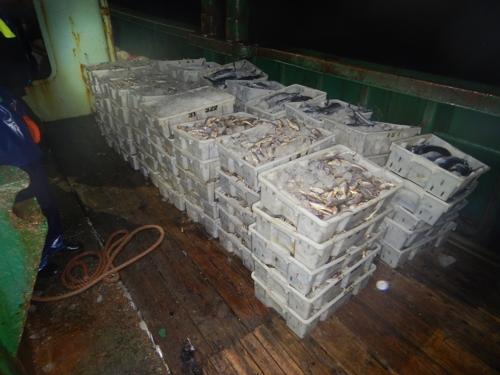서해어업관리단, 어획량 축소 중국어선 나포