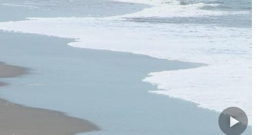日 해안에도 온난화 충격파…금세기말 모래톱 60% 소실 우려