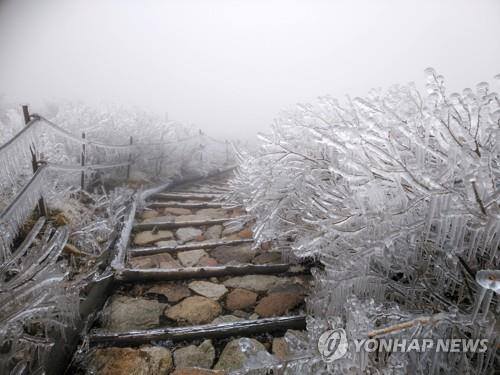 강원 국립공원 16일부터 고지대 탐방로 개방