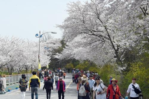 목포 유달산 봄 축제 4월 6일 열린다