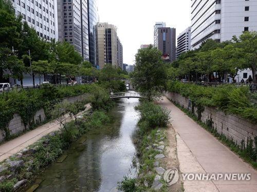 서울 청계천 생태학습 참가 학생 오늘부터 모집